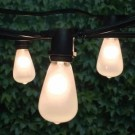 Feestverlichting LED 20 lampen wit edison
